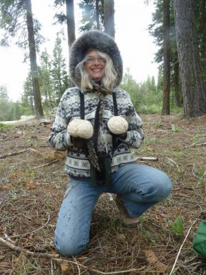 Debbie Viess with Sierran puffballs